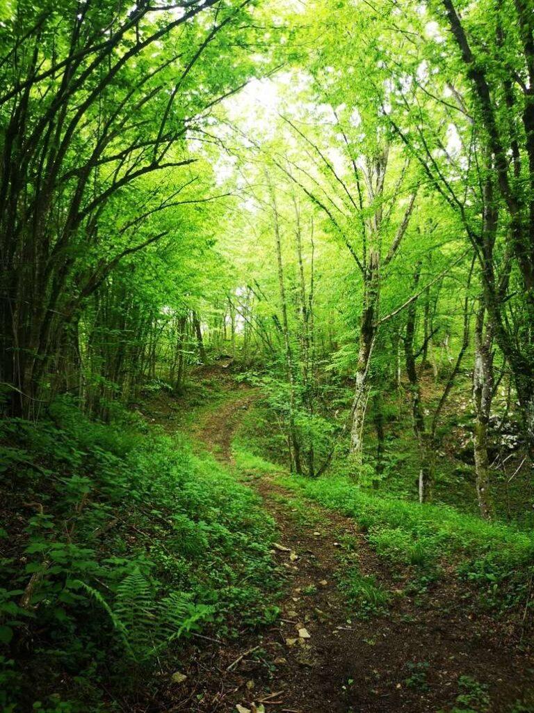 Sustainable tourism Croatia